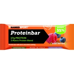 PROTEIN BAR - WILD BERRIES